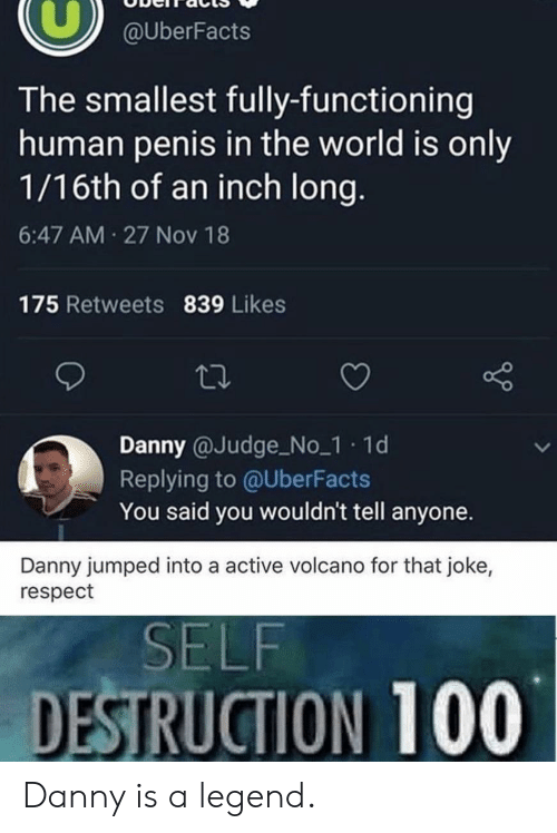 Respect, Penis, and Volcano: @UberFacts  The smallest fully-functioning  human penis in the world is only  1/16th of an inch long.  6:47 AM 27 Nov 18  175 Retweets 839 Likes  Danny @Judge No_1 1d  Replying to @UberFacts  You said you wouldn't tell anyone.  Danny jumped into a active volcano for that joke,  respect  SELF  DESTRUCTION 100 Danny is a legend.
