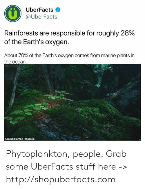 Memes, Http, and Ocean: UberFacts  @UberFacts  Rainforests are responsible for roughly 28%  of the Earth's oxygen.  About 70% of the Earth's oxygen comes from marine plants in  the ocean  überfacts  Credit: Hamed Hosseini Phytoplankton, people.  Grab some UberFacts stuff here -> http://shopuberfacts.com
