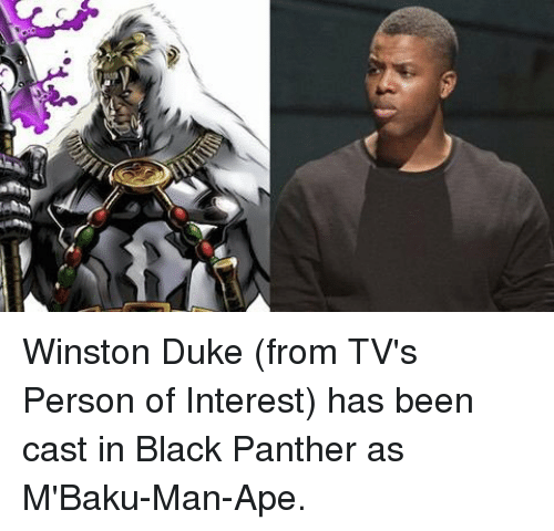 Uge Winston Duke From TV's Person of Interest Has Been Cast in Black