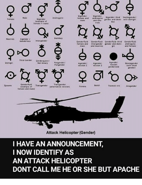 ugende bigender third demiagenaer androgyne emale and and gender and 20216264 ✅ 25 best memes about tzeentch tzeentch memes,B But Meme