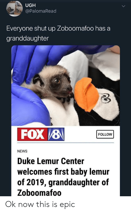 UGH Everyone Shut Up Zoboomafoo Has a Granddaughter FOX 8