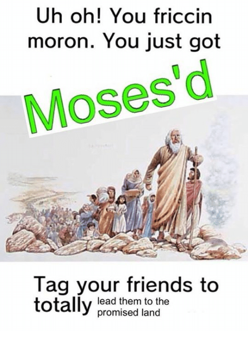 Friends, Dank Memes, and Moses: Uh oh! You friccin  moron. You just got  Moses d  Tag your friends to  totally  lead them to the  promised land