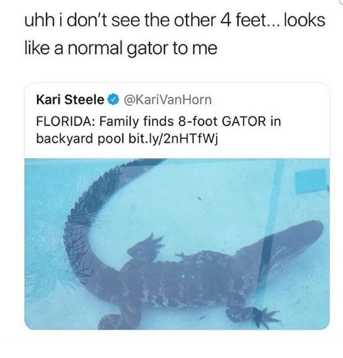 Home Market Barrel Room Trophy Room ◀ Share Related ▶ family memes Florida Pool 🤖 feet foot normal bit.ly like uhh see next collect meme → Embed it next → uhh i don't see the other 4 feet looks like a normal gator to me Kari Steele@KariVanHorn FLORIDA Family finds 8-foot GATOR in backyard pool bitly2nHTfWj Meme family memes Florida Pool 🤖 feet foot normal bit.ly like uhh see dont kari gator backyard Other Looks Like The Looks I Dont family family memes memes Florida Florida Pool Pool 🤖 🤖 feet feet foot foot normal normal bit.ly bit.ly like like uhh uhh see see dont dont kari kari gator gator backyard backyard Other Other Looks Like Looks Like The The Looks Looks I Dont I Dont found @ 19 likes ON 2018-03-13 19:30:18 BY me.me source: instagram view more on me.me