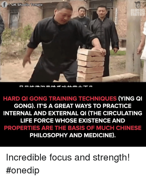 Memes, Philosophy, and Medicine: UK Shaolin Temple  HARD QI GONG TRAINING TECHNIQUES  (YING GI  GONG). IT'S A GREAT WAYS TO PRACTICE  INTERNAL AND EXTERNAL QI (THE CIRCULATING  LIFE FORCE WHOSE EXISTENCE AND  PROPERTIES ARE THE BASIS OF MUCH CHINESE  PHILOSOPHY AND MEDICINE). Incredible focus and strength! #onedip