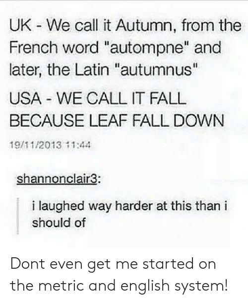 """Fall, Word, and English: UK - We call it Autumn, from the  French word """"autompne"""" and  later, the Latin """"autumnus""""  USA WE CALL IT FALL  BECAUSE LEAF FALL DOWN  19/11/2013 11:44  shannonclair3:  i laughed way harder at this than i  should of Dont even get me started on the metric and english system!"""