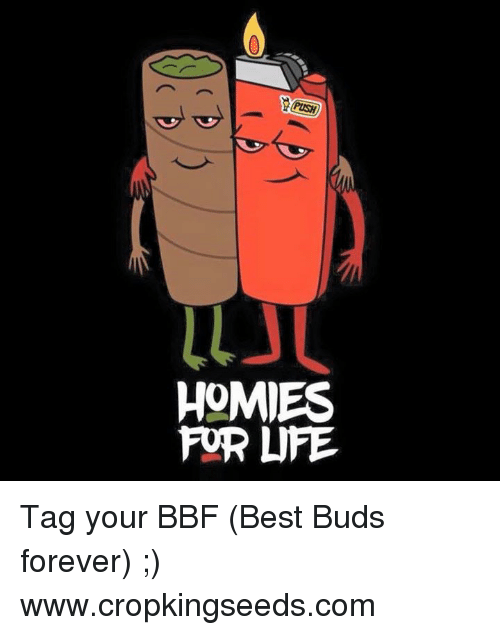 25 best memes about homies for life homies for life memes