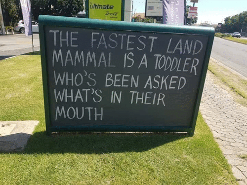 Memes, Been, and 🤖: ultimate  THE FASTEST LAND  MAMMAL IS A TODDLER  WHO'S BEEN ASKED  WHAT'S IN THEIR  MOUTH