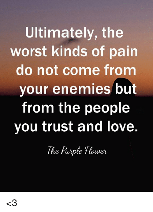 Love, Memes, and The Worst: Ultimately, the  worst kinds of pain  do not come from  your enemies but  from the people  you trust and love  The Rurple Flower <3