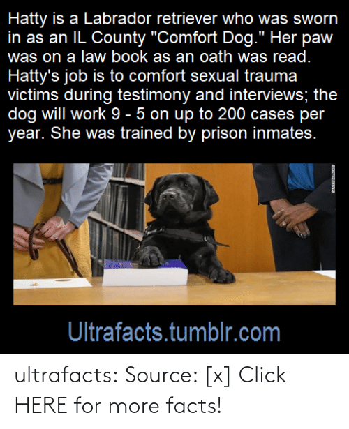 Click, cnn.com, and Facts: ultrafacts: Source: [x] Click HERE for more facts!