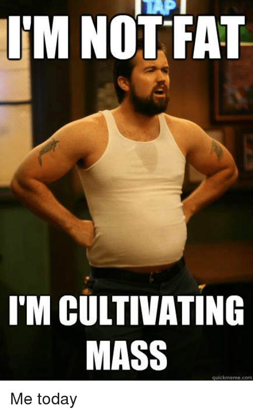 Memes, Today, and 🤖: UM NOTFAT  T'M CULTIVATING  MASS  quickmeme.com Me today