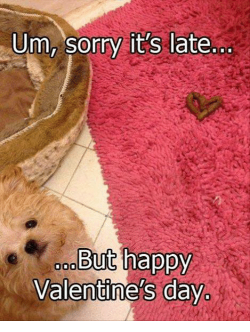 Memes, Sorry, and Valentine's Day: Um, sorry it's late  But happy  Valentine's day