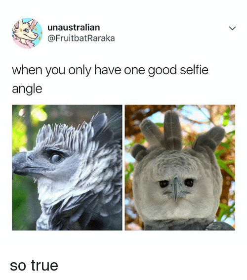 Selfie, True, and Good: unaustralian  @FruitbatRaraka  ,  when you only have one good selfie  angle so true
