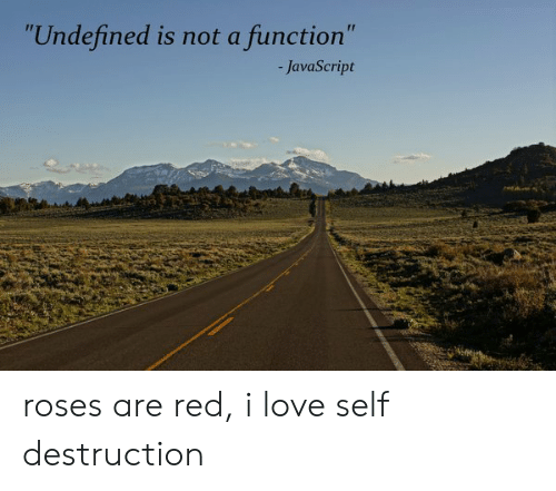 """Love, Javascript, and Red: """"Undefined is not a function""""  -JavaScript roses are red, i love self destruction"""