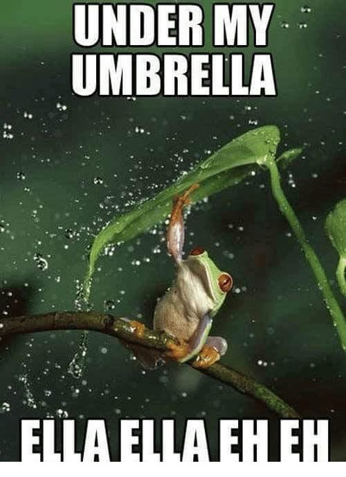Search Umbrella Ella Ella Memes on me.me