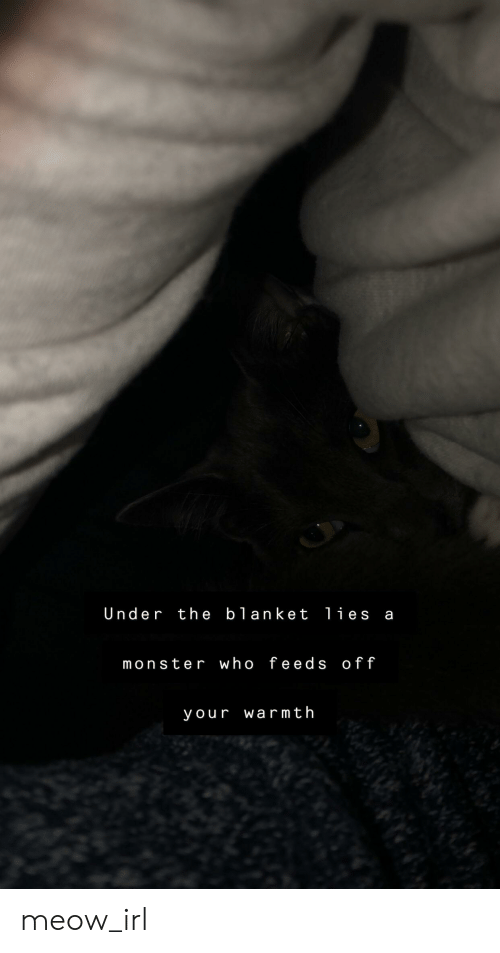 Monster, Irl, and Cat IRL: Under the blanket li es a  monster who feeds off  your warmth meow_irl