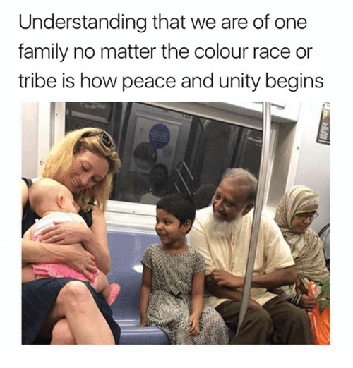 Family, Memes, and Unity: Understanding that we are of one  family no matter the colour race or  tribe is how peace and unity begins