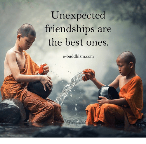 Memes, Best, and Buddhism: Unexpected  friendships are  the best ones.  e-buddhism com