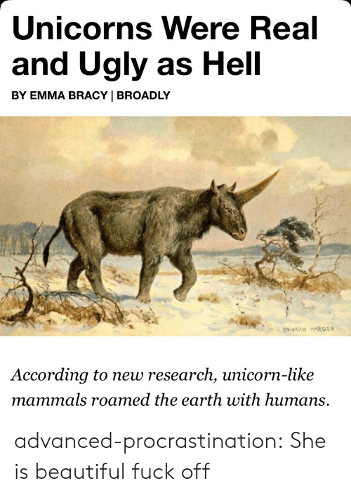 Beautiful, Tumblr, and Ugly: Unicorns Were Real  and Ugly as Hell  BY EMMA BRACY   BROADLY  According to new research, unicorn-like  mammals roamed the earth with humans, advanced-procrastination: She is beautiful fuck off