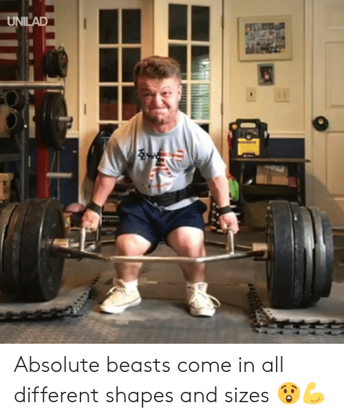Dank, 🤖, and All: UNILAD Absolute beasts come in all different shapes and sizes 😲💪