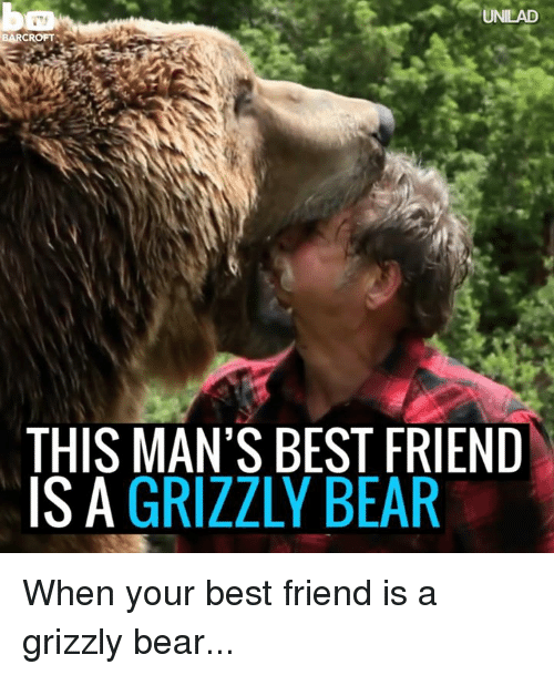 unilad barcrofts this mans best friend is a grizzly bear 6277674 ✅ 25 best memes about a grizzly bear a grizzly bear memes