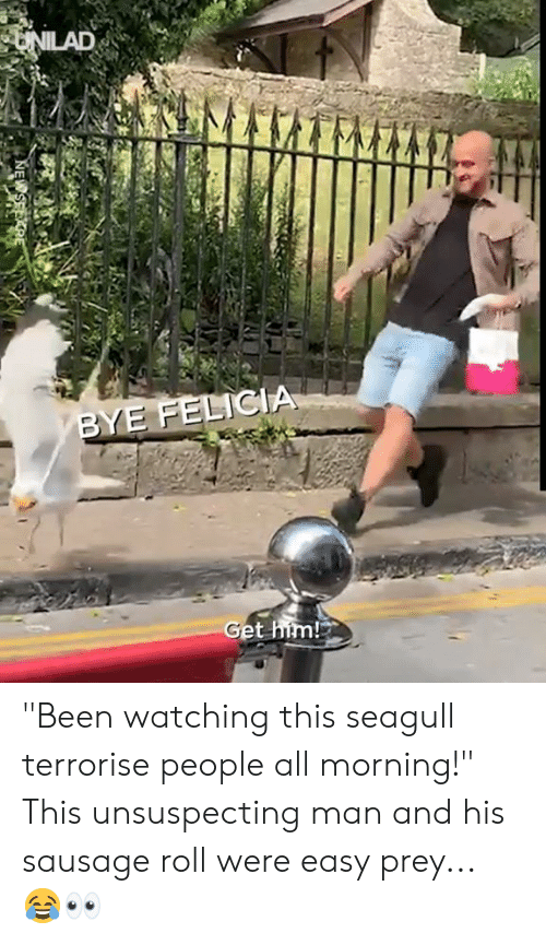 "Bye Felicia, Dank, and Been: UNILAD  BYE FELICIA  Get him! ""Been watching this seagull terrorise people all morning!"" This unsuspecting man and his sausage roll were easy prey... 😂👀"