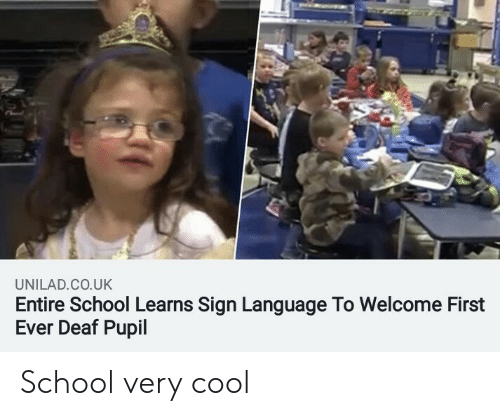 School, Cool, and Sign Language: UNILAD.CO.UK  Entire School Learns Sign Language To Welcome First  Ever Deaf Pupil School very cool