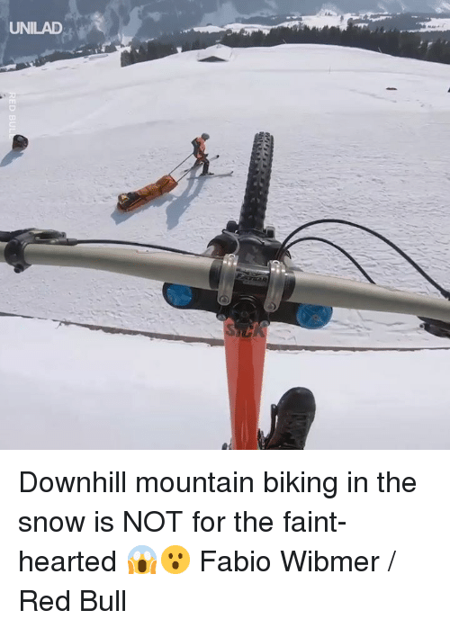 Dank, Red Bull, and Snow: UNILAD Downhill mountain biking in the snow is NOT for the faint-hearted 😱😮  Fabio Wibmer / Red Bull