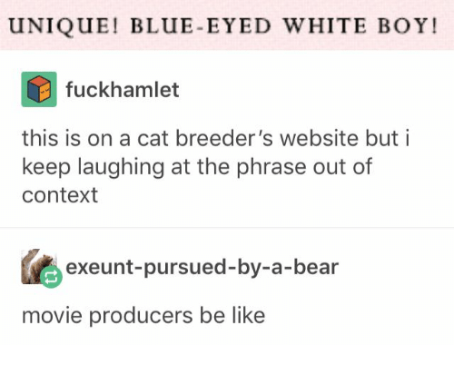Be Like, Bear, and Blue: UNIQUE! BLUE-EYED WHITE BOY!  fuckhamlet  this is on a cat breeder's website but i  keep laughing at the phrase out of  context  exeunt-pursued-by-a-bear  movie producers be like