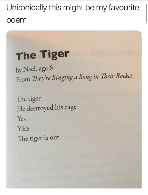Unironically This Might Be My Favourite Poem The Tiger By