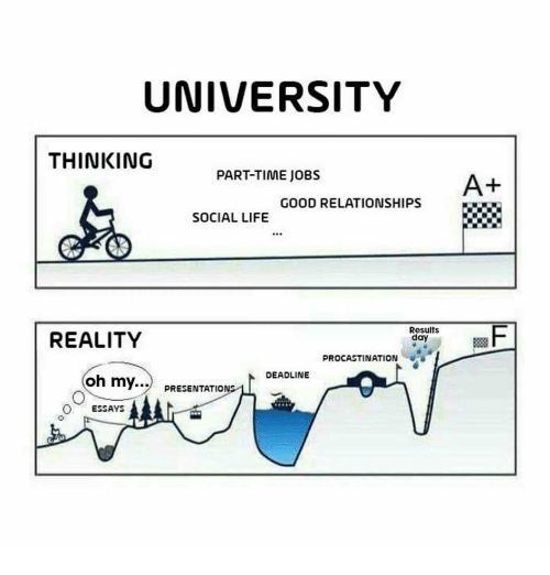Life, Relationships, and Good: UNIVERSITY  THINKING  PART-TIME JOBS  A+  GOOD RELATIONSHIPS  SOCIAL LIFE  REALITY  Results  day  PROCASTINATION  DEADLINE  my  PRESENTATIONS  ESSAYS