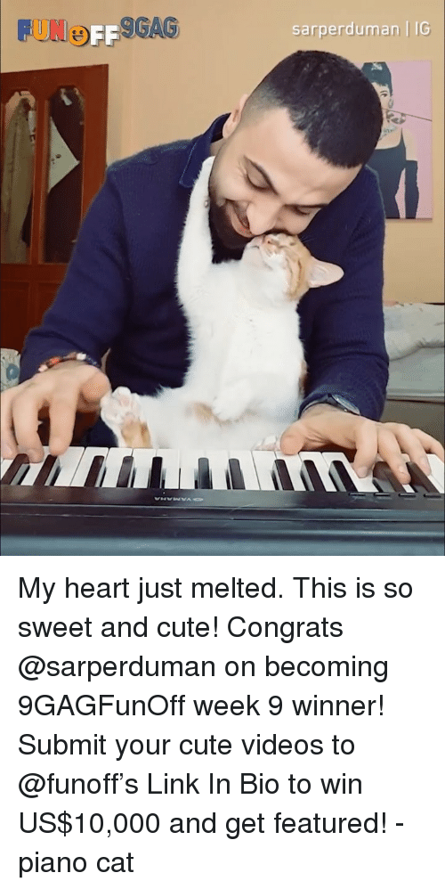 Cute, Memes, and Videos: UNOFF  GAS  sarperduman   IG My heart just melted. This is so sweet and cute! Congrats @sarperduman on becoming 9GAGFunOff week 9 winner! Submit your cute videos to @funoff's Link In Bio to win US$10,000 and get featured! - piano cat