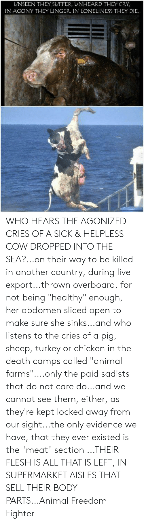 """Memes, Animal, and Chicken: UNSEEN THEY SUFFER, UNHEARD THEY CRY,  IN AGONY THEY LINGER, IN LONELINESS THEY DIE WHO HEARS THE AGONIZED CRIES OF A SICK & HELPLESS COW DROPPED INTO THE SEA?...on their way to be killed in another country, during live export...thrown overboard, for not being """"healthy"""" enough, her abdomen sliced open to make sure she sinks...and who listens to the cries of a pig, sheep, turkey or chicken in the death camps called """"animal farms""""....only the paid sadists that do not care do...and we cannot see them, either, as they're kept locked away from our sight...the only evidence we have, that they ever existed is the """"meat"""" section ...THEIR FLESH IS ALL THAT IS LEFT, IN SUPERMARKET AISLES THAT SELL THEIR BODY PARTS...Animal Freedom Fighter"""