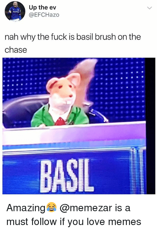 Love, Memes, and Chase: Up the ev  @EFCHazo  nah why the fuck is basil brush on the  chase  BASIL Amazing😂 @memezar is a must follow if you love memes