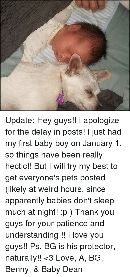 Apparently, Love, and Memes: Update: Hey guys!! I apologize for the delay in posts! I just had my first baby boy on January 1, so things have been really hectic!! But I will try my best to get everyone's pets posted (likely at weird hours, since apparently babies don't sleep much at night! :p )  Thank you guys for your patience and understanding !! I love you guys!!  Ps. BG is his protector, naturally!!  <3   Love, A, BG, Benny, & Baby Dean