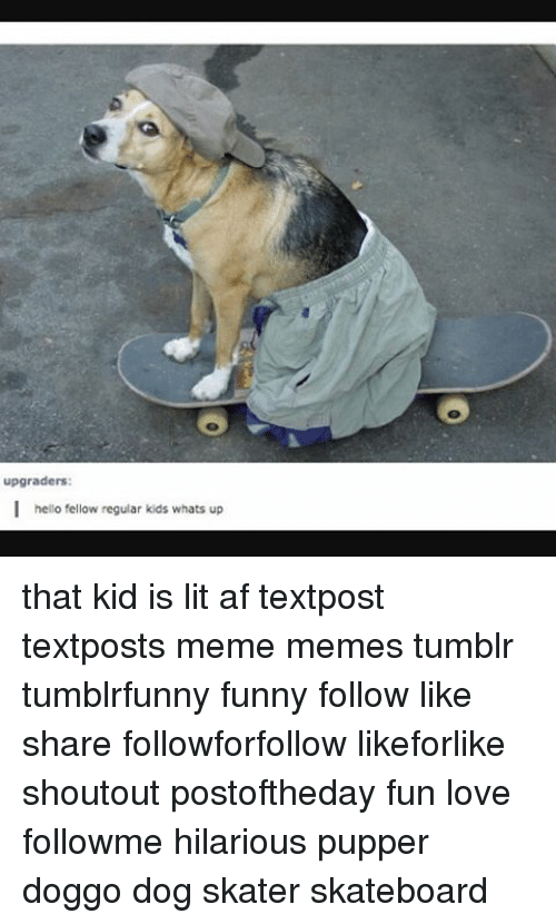 upgraders i hello fellow regular kids whats up that kid 12027934 ✅ 25 best memes about hentai animals hentai animals memes