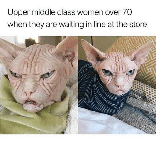 Women, Dank Memes, and Waiting...: Upper middle class women over 70  when they are waiting in line at the store