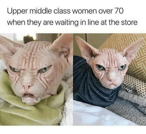 Women, Waiting..., and Upper Middle Class: Upper middle class women over 70  when they are waiting in line at the store