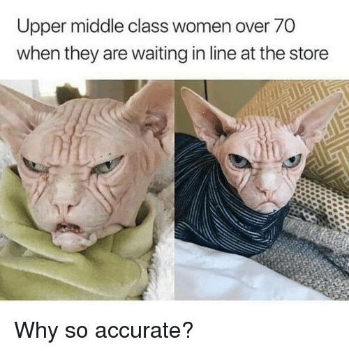 Women, Waiting..., and Upper Middle Class: Upper middle class women over 70  when they are waiting in line at the store Why so accurate?