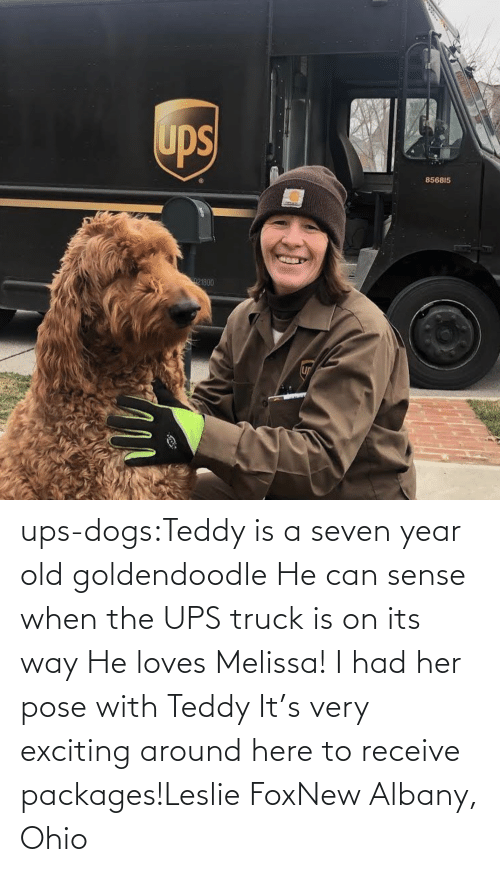 Dogs, Target, and Tumblr: ups-dogs:Teddy is a seven year old goldendoodle He can sense when the UPS truck is on its way He loves Melissa! I had her pose with Teddy It's very exciting around here to receive packages!Leslie FoxNew Albany, Ohio