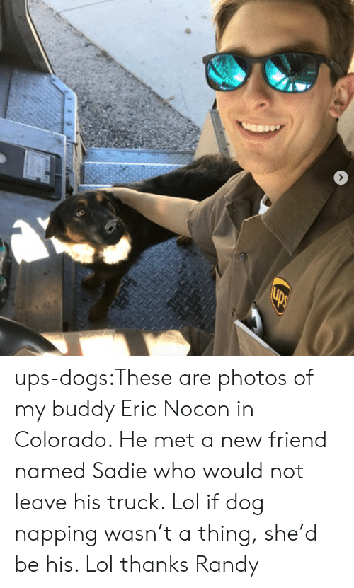 Dogs, Lol, and Target: ups-dogs:These are photos of my buddy Eric Nocon in Colorado. He met a new friend named Sadie who would not leave his truck. Lol if dog napping wasn't a thing, she'd be his. Lol thanks Randy