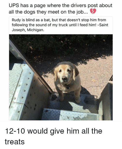 ups has a page where the drivers post about all 28440893 ✅ 25 best memes about blind as a bat blind as a bat memes
