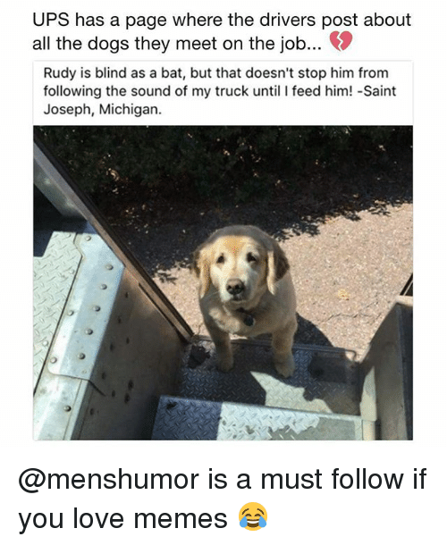 Dogs, Love, and Memes: UPS has a page where the drivers post about  all the dogs they meet on the job...。  Rudy is blind as a bat, but that doesn't stop him from  following the sound of my truck until I feed him! -Saint  Joseph, Michigan. @menshumor is a must follow if you love memes 😂