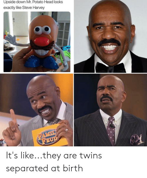 Upside Down Mr Potato Head Looks Exactly Like Steve Harvey It S Likethey Are Twins Separated At Birth Funny Meme On Me Me