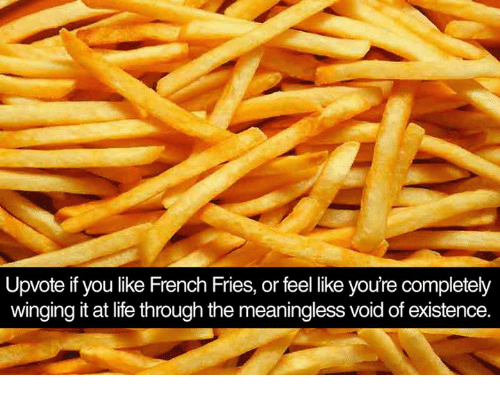 Life, Memes, and Wings: Upvote if you like French Fries, or feel like youre completely  winging it at life through the meaningless void of existence.