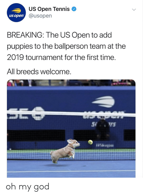 God, Oh My God, and Puppies: US Open Tennis  @usopen  us open  BREAKING: The US Open to add  puppies to the ballperson team at the  2019 tournament for the first time  All breeds welcome oh my god