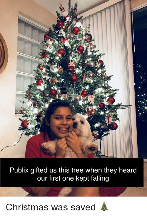 Publix Christmas Hours.Us Publix Gifted Us This Tree When They Heard Our First One