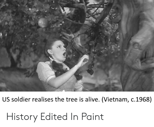 Us Soldier Realises The Tree Is Alive Vietnam C1968 History