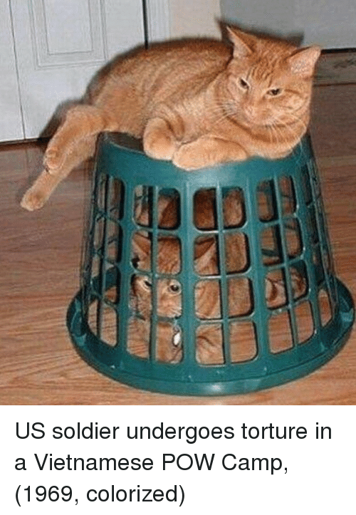 Vietnamese, Camp, and Torture: US soldier undergoes torture in a Vietnamese POW Camp, (1969, colorized)