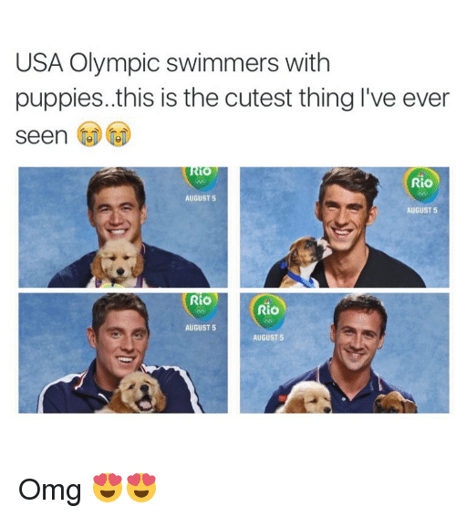 Omg, Puppies, and Puppy: USA Olympic swimmers with  puppies. this is the cutest thing I've ever  seen  Rio  AUGUST 5  AUGUST 5  Rio  Rio  AUGUST 5  AUGUST 5 Omg 😍😍