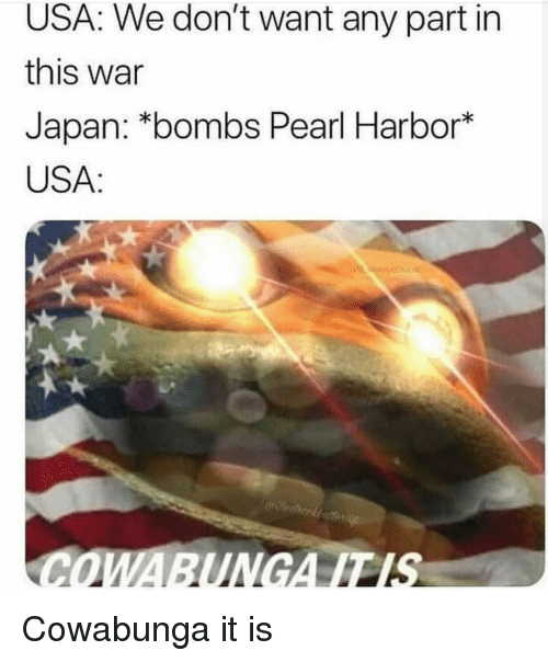 Japan, Pearl Harbor, and Usa: USA: We don't want any part in  this war  Japan: *bombs Pearl Harbor*  USA:  COWABUNGAITIS Cowabunga it is
